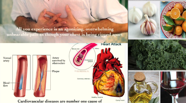 The Oxidized Cholesterol Strategy Book