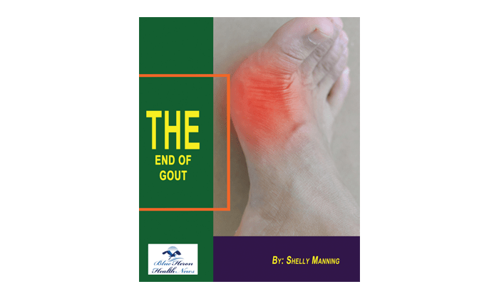 End Of Gout System